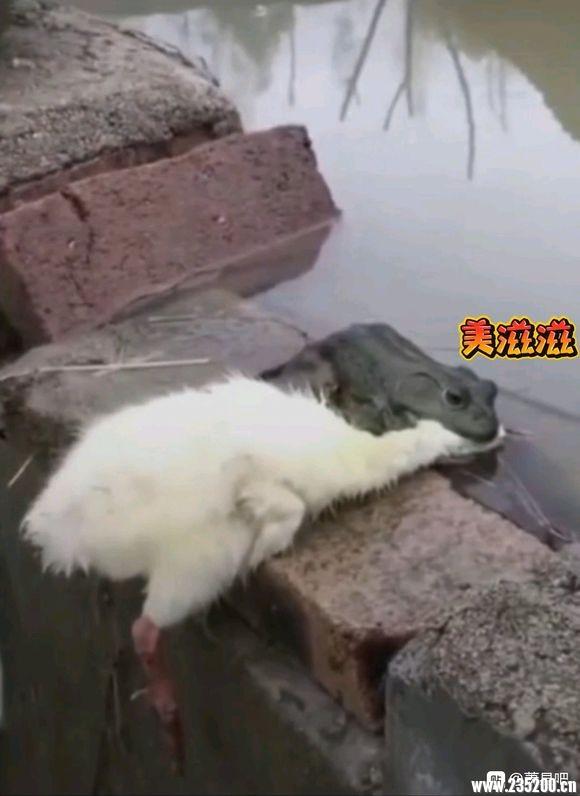 """吧友大大们,我想问下你们萧县那边结婚的彩礼一般多少?所谓的""""江湖规矩"""""""